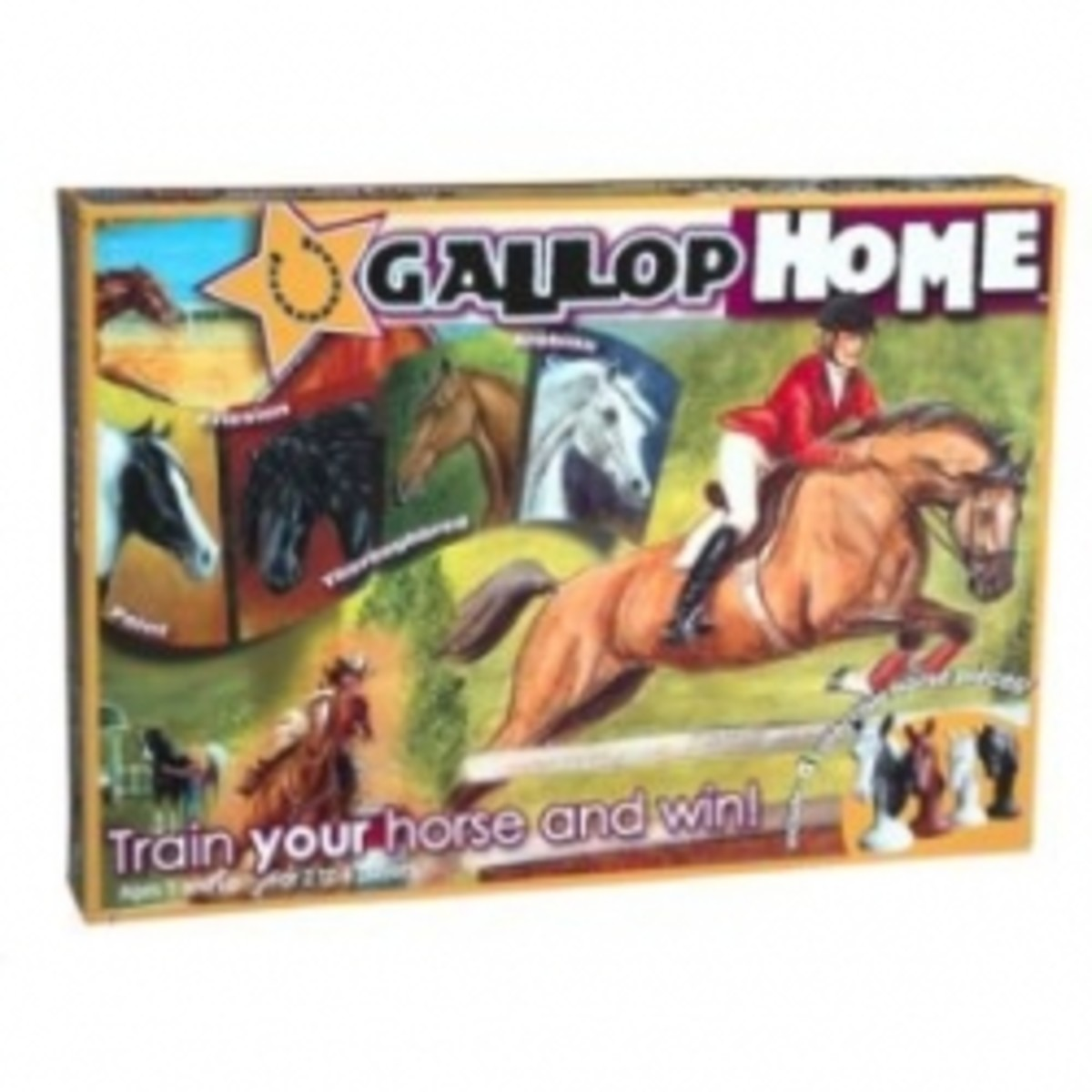 GallopHome an equine Game...