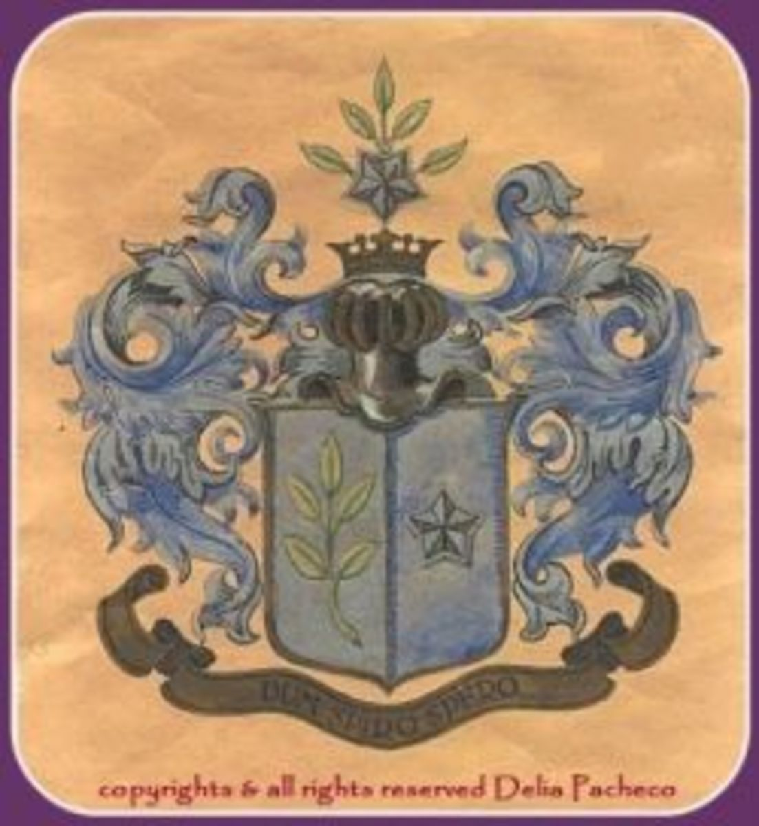 My von Meyer family name & the Coat of Arms ~