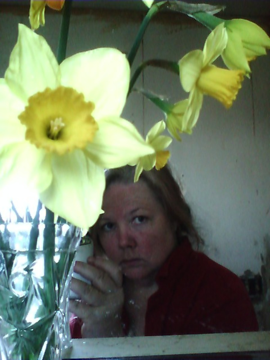 First Cut Daffodils of the Season (and Me) I have alot of fun in my garden - and I make some money too!