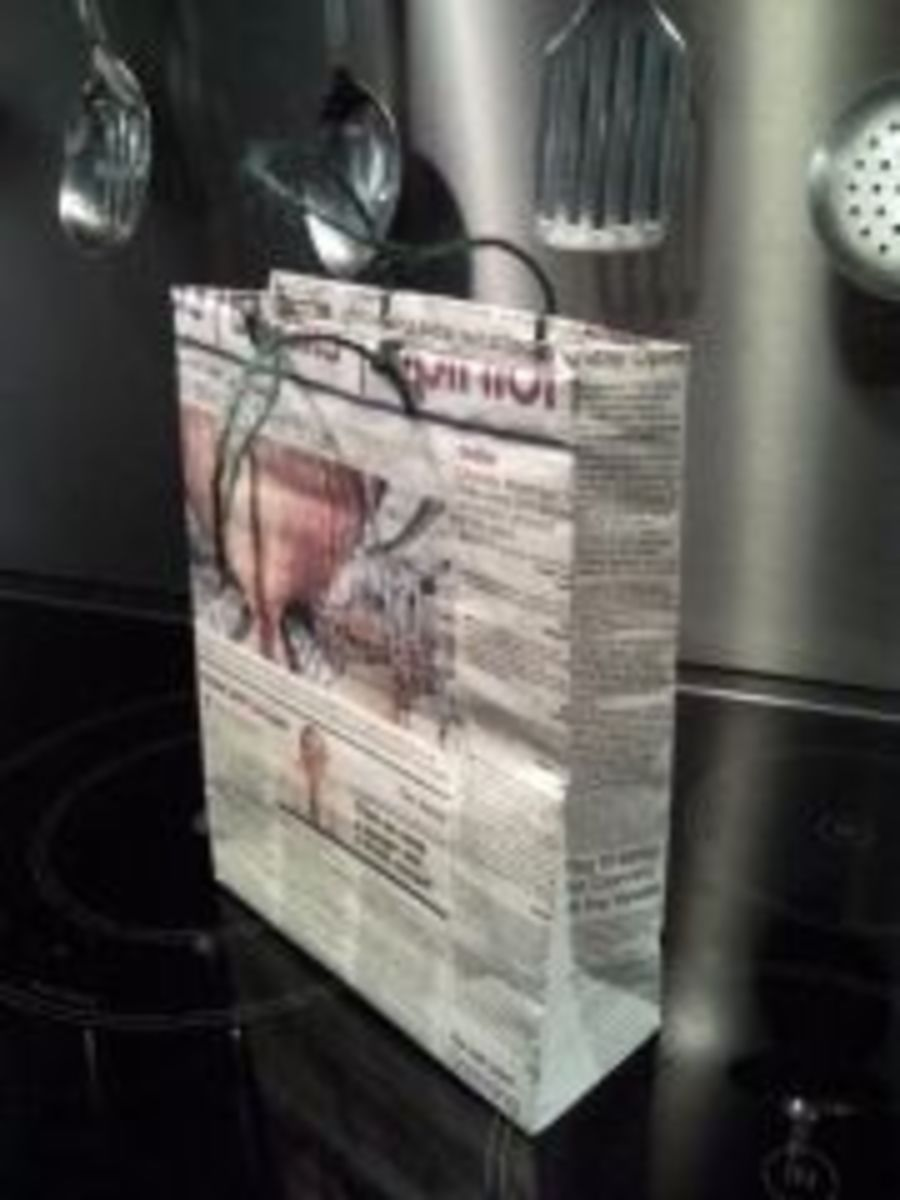 The Newspaper Bag Project