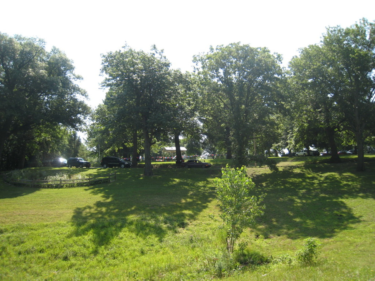 A Great Park to go play Frisbee or just relax on a towel in the shade.
