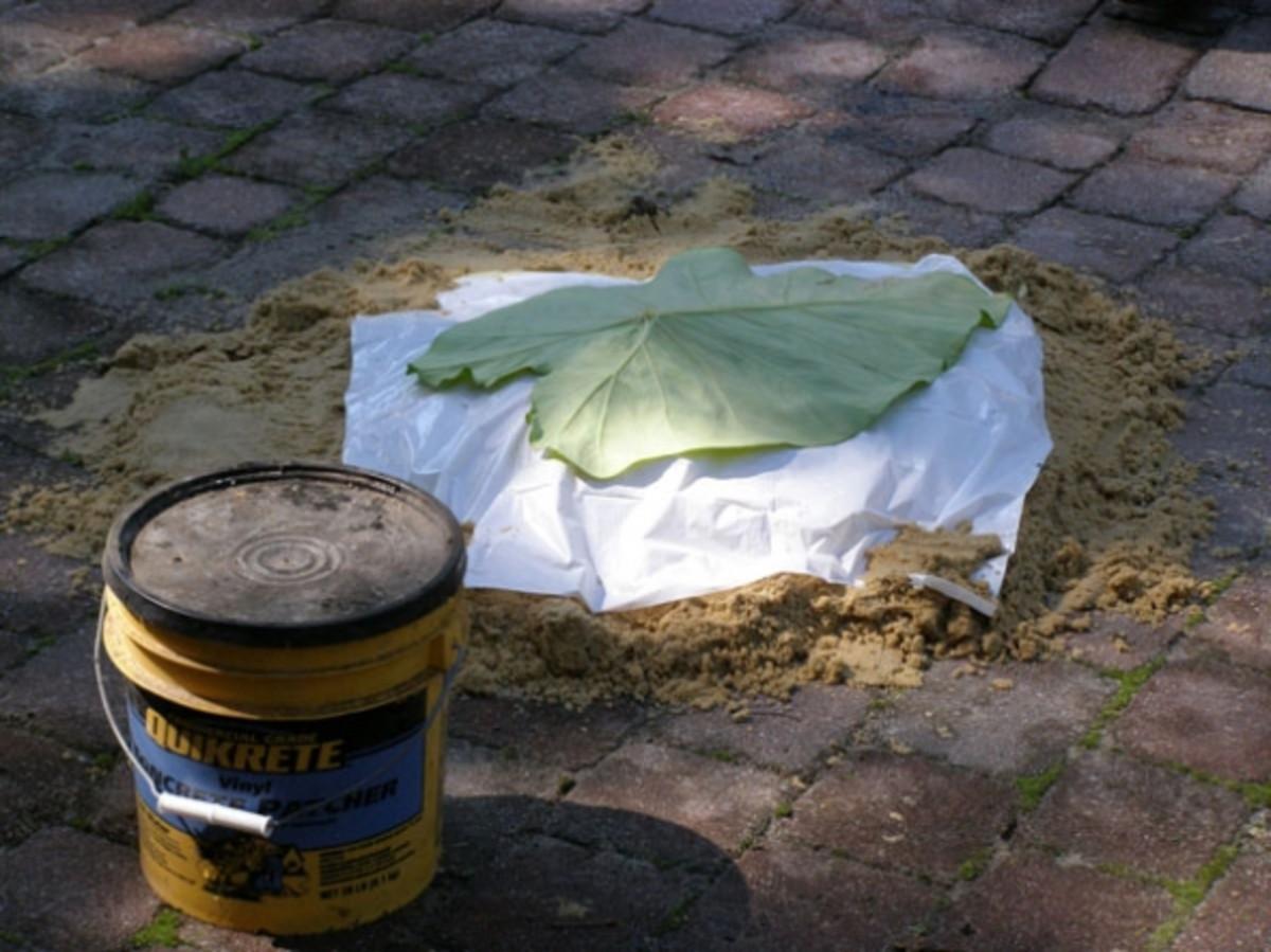 Making a sand cast concrete tray with elephant ear leaf