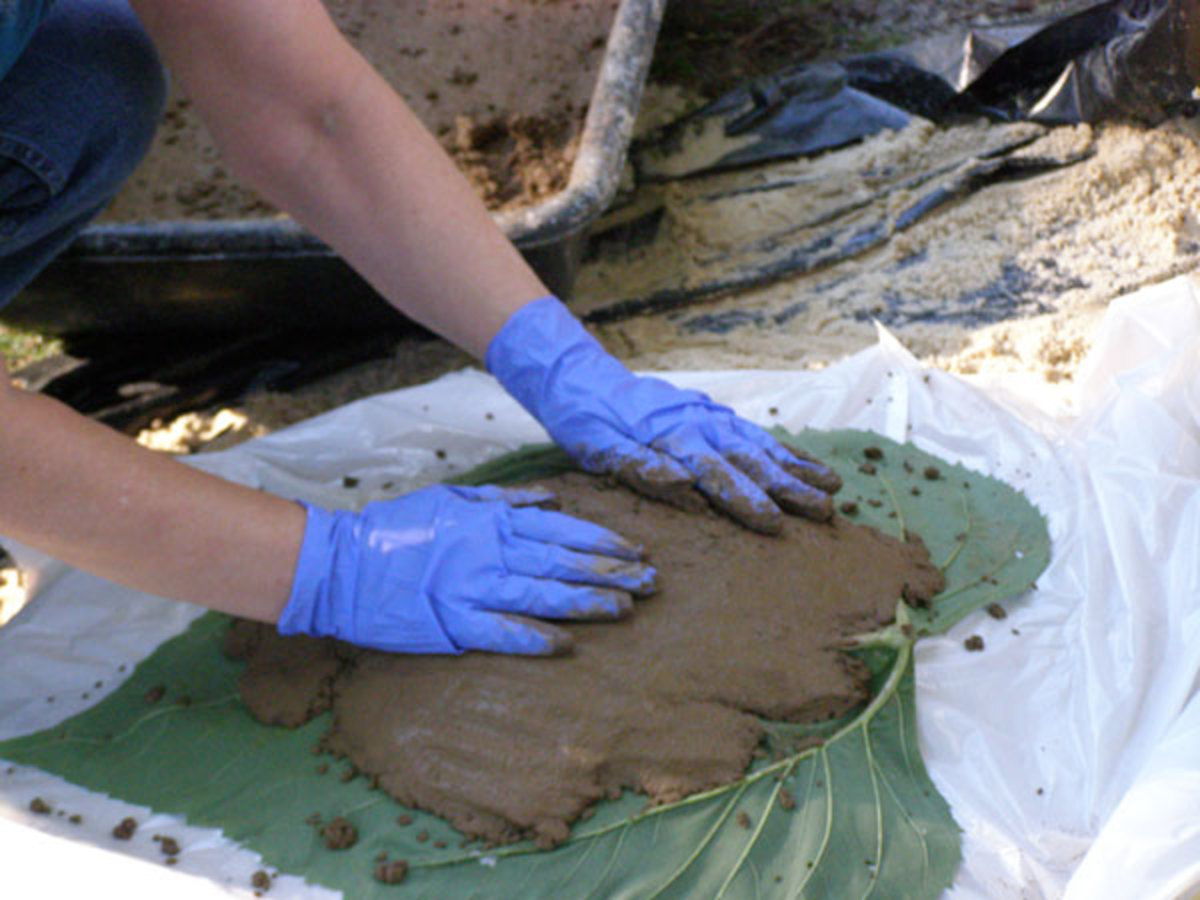 Patting the concrete onto the leaf is a lot like making cookies