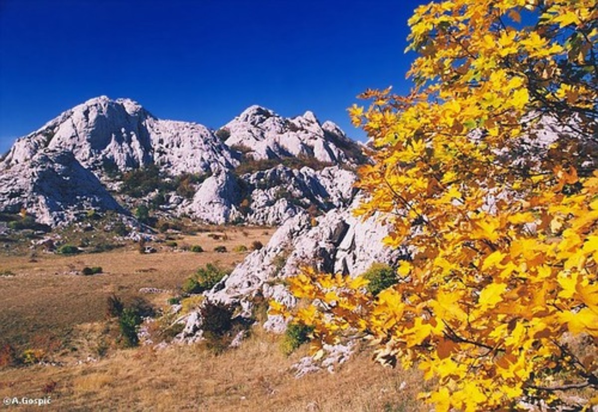 One of the most romantic and magical places on mountain Velebit: STAP, south Velebit, Croatia, where I have been and want to go again (with same company)