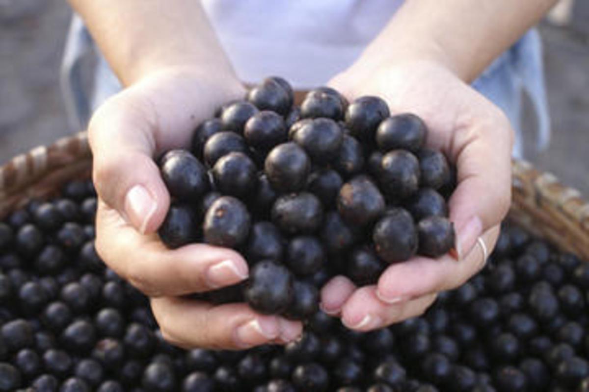 Acai berries and Acai Juice
