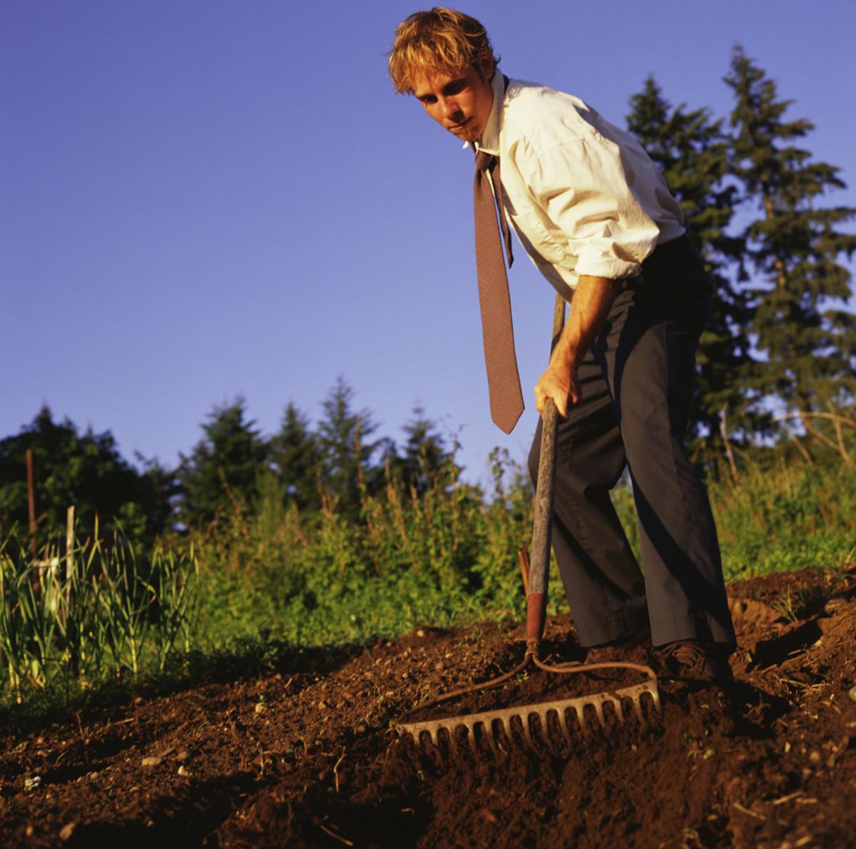 beginner-homesteading