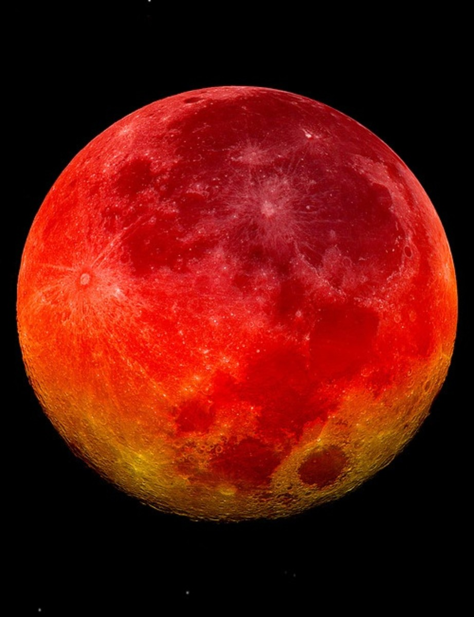Photos Of The Blood Moon