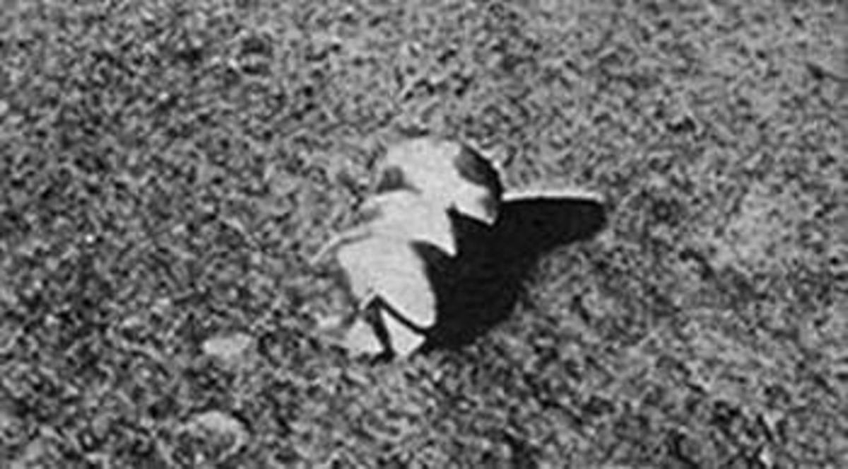 This was from one of the unmanned Russian missions. Many people over the years have tried their best to figure out what it is. It is clearly a man made or alien made object.