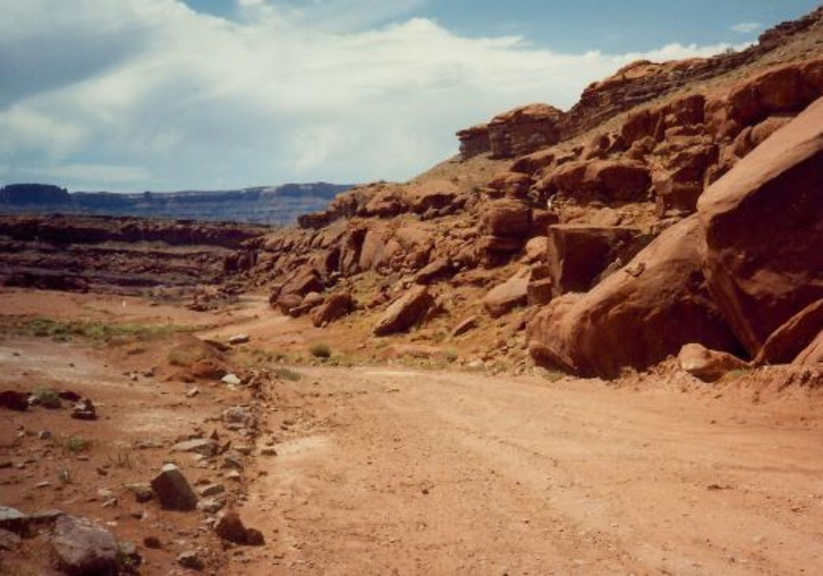 The graded road we followed in Canyonlands National Park looks nice and wide here but it got narrower!