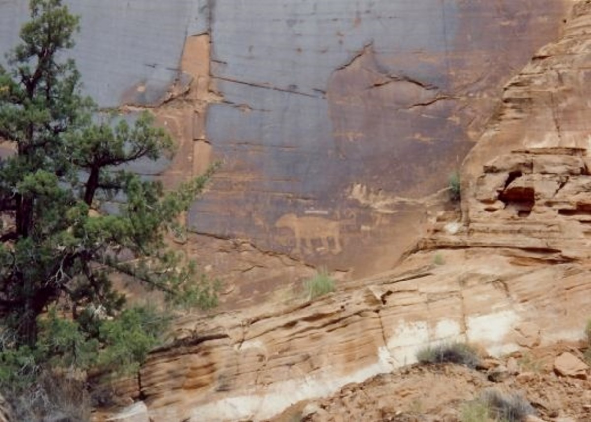 Petroglyphs in Canyonlands National Park