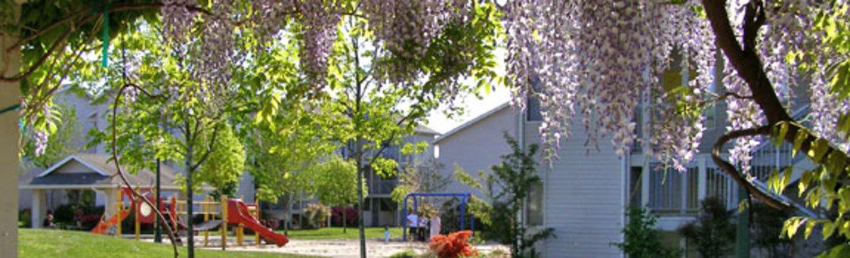 university-family-housing