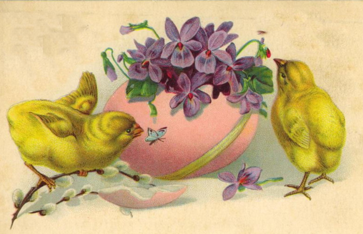 Two Easter chicks and a butterfly with pink Easter egg filled with violets