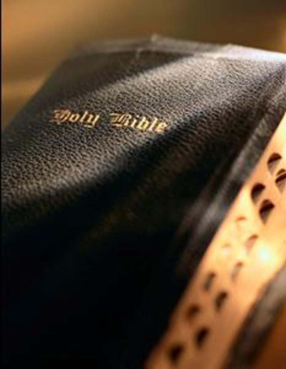 Seven Steps on How to Study the Bible Effectively