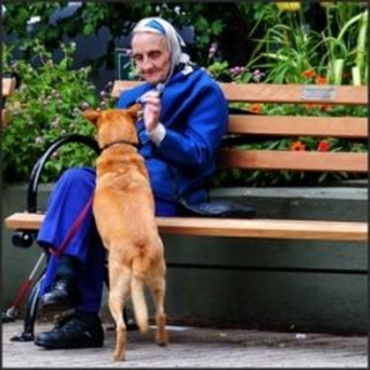 Old Age - Helpless Despair