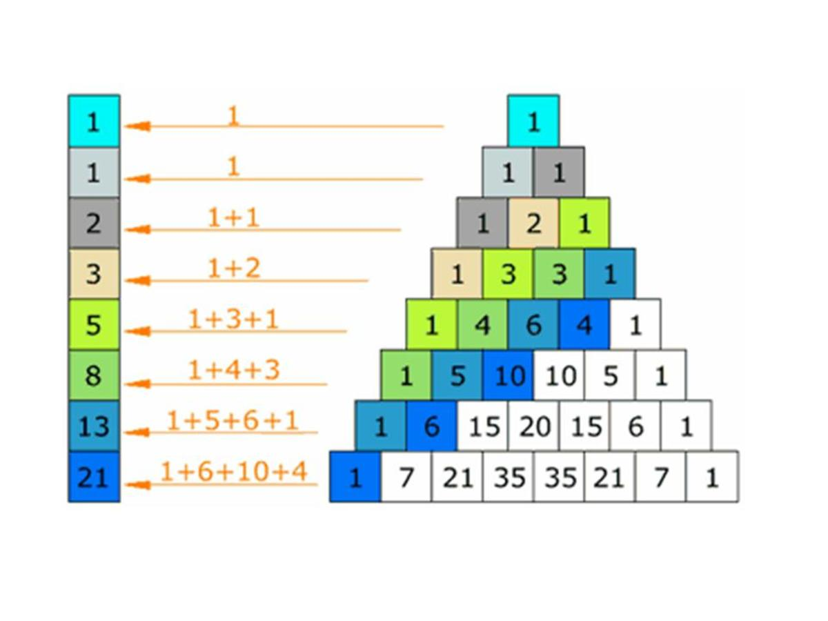 Fibonacci Numbers- each number is the sum of the two numbers before it