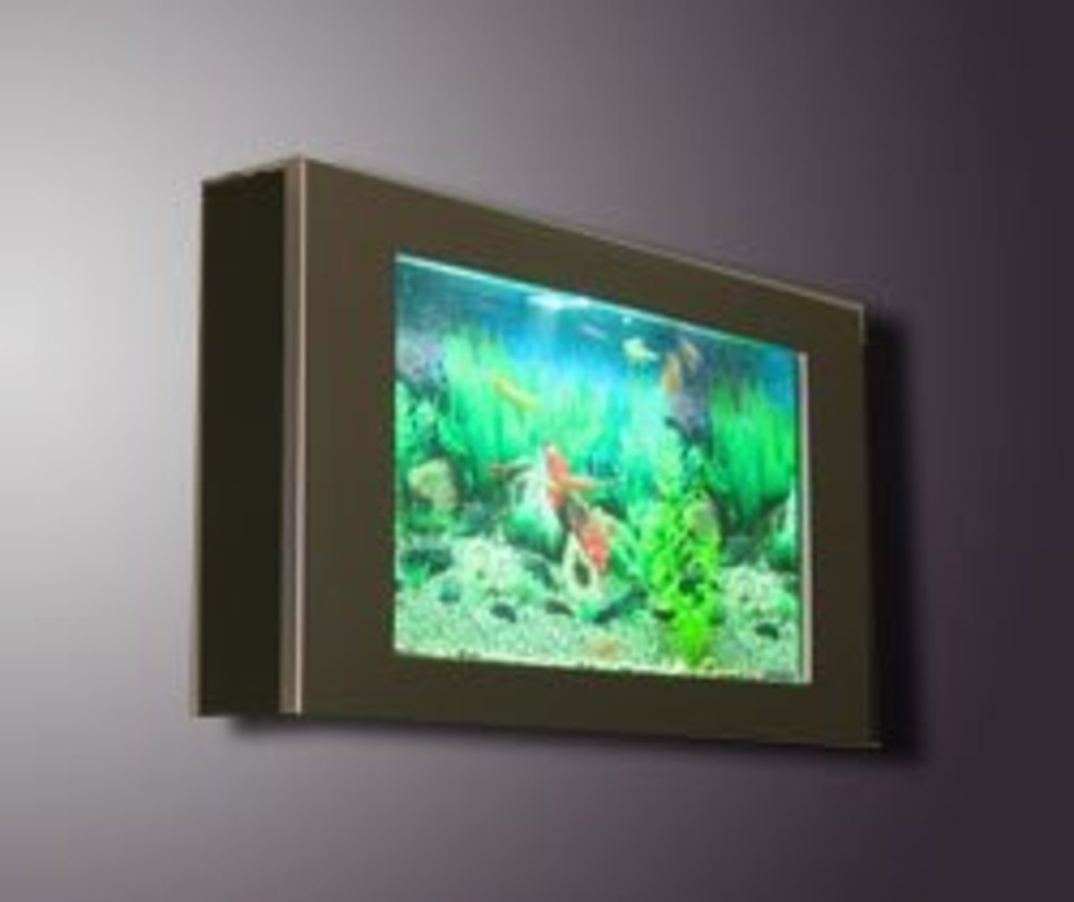 Wall Mounted Aquarium in Office.
