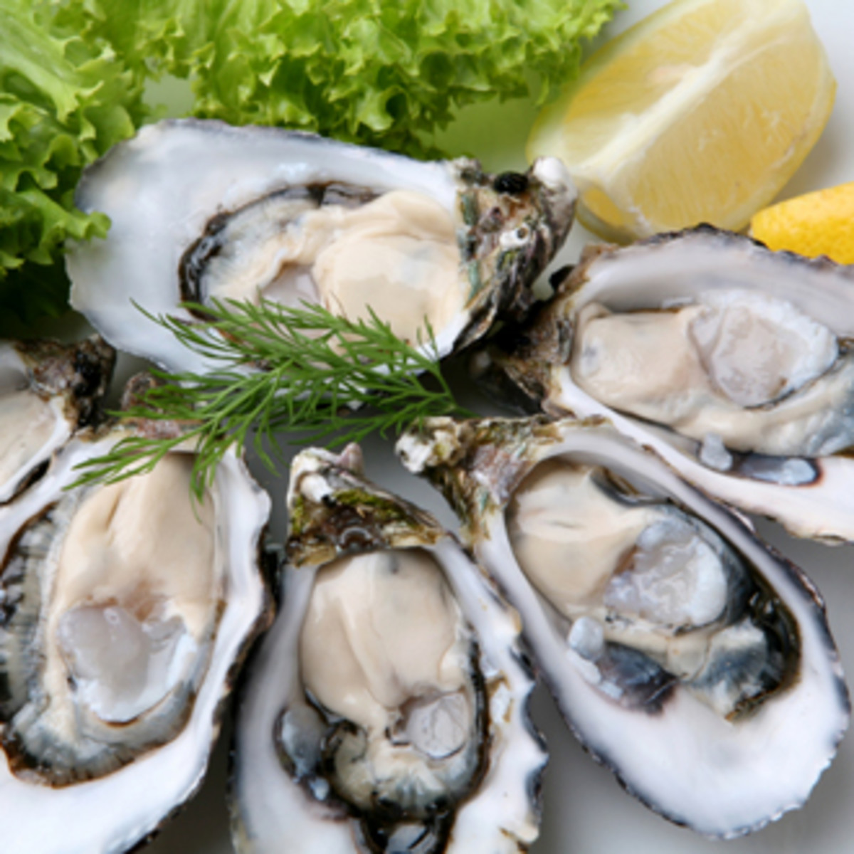 Causes and Symptoms of A Shellfish Allergy