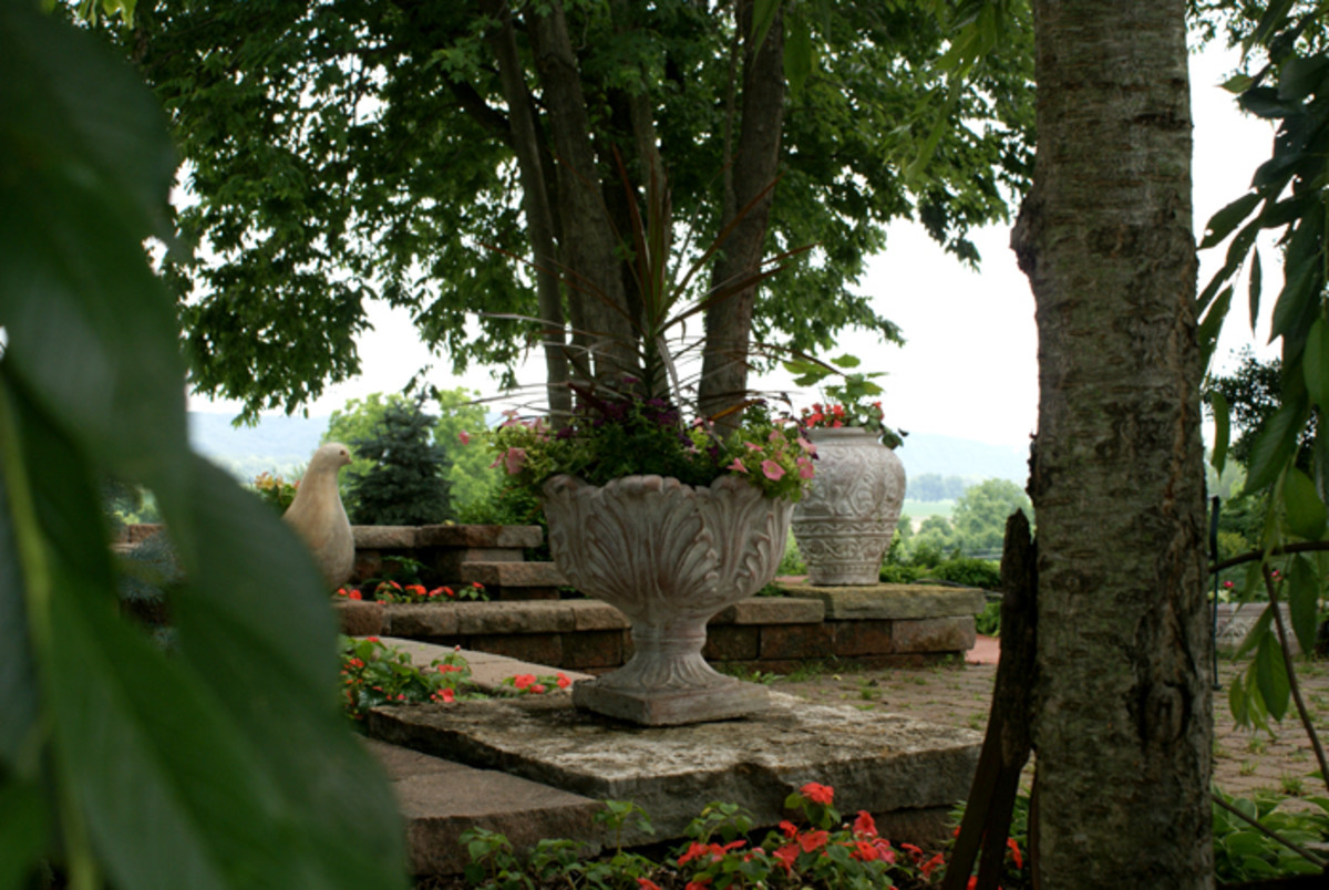 Wine Country Gardens- Peaceful and Serene