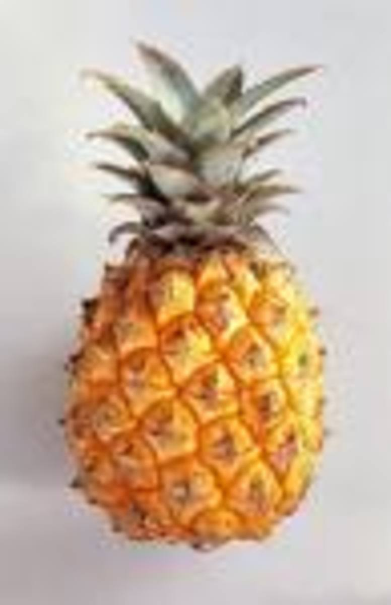 Nature's Remedies - The Pineapple
