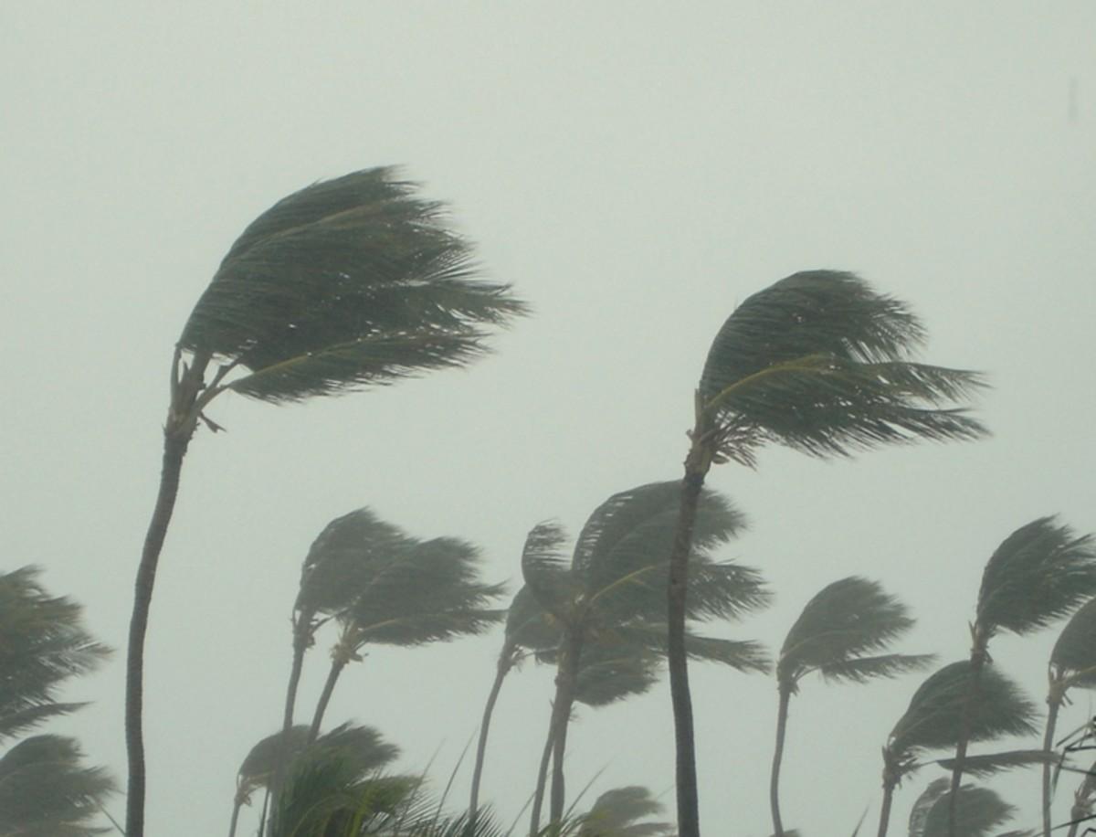 Ephesians 4:11-16 Every Wind Of Doctrine