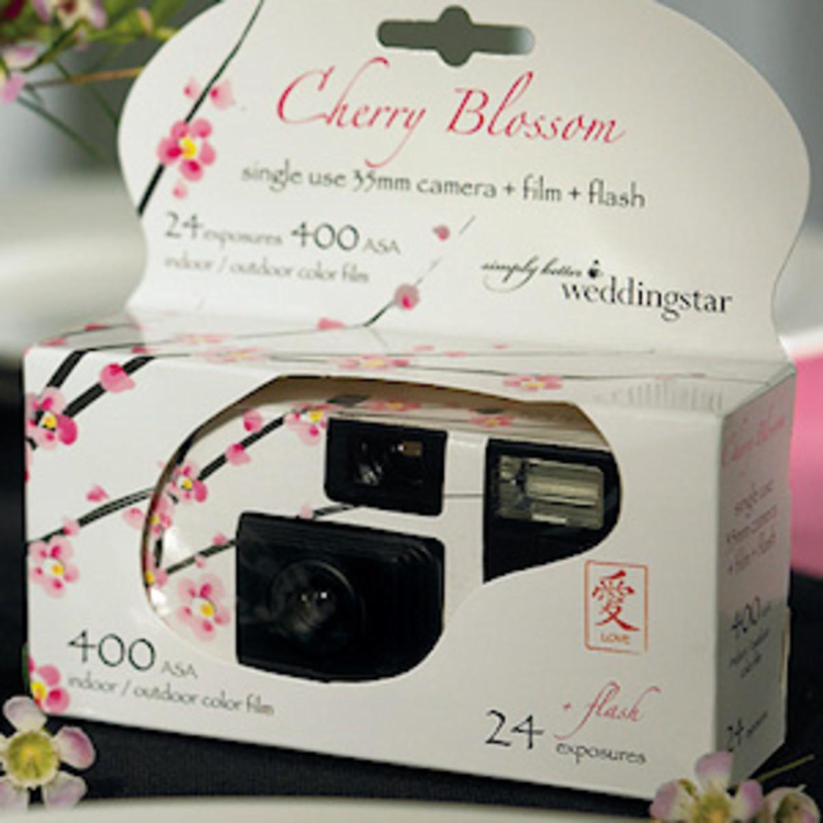 Indoor/Outdoor disposable camera.