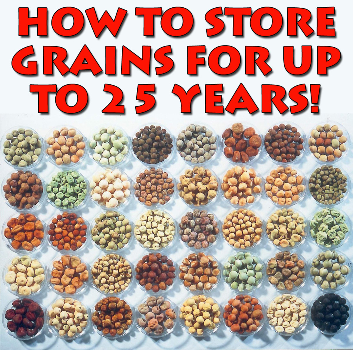 the-survival-guide-to-long-term-food-storage-part-2