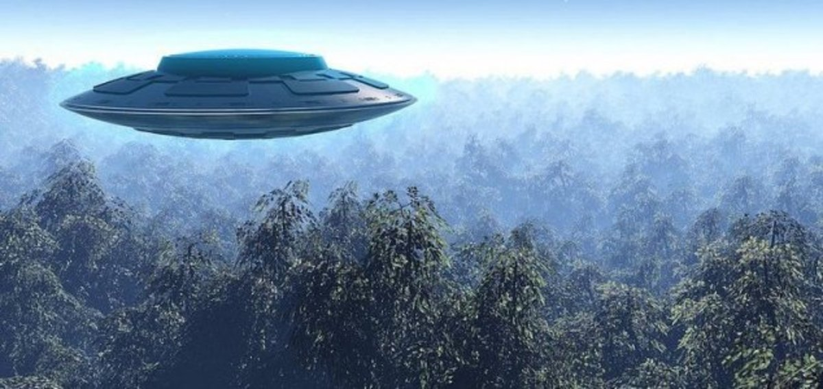 The states of Vermont, Arizona and Maine were home to the most sightings per capita last year. UFO reports are still coming in thick and fast according to 2013's MUFON ( Mutual UFO Network ) data which has since been turned in to a series of maps by