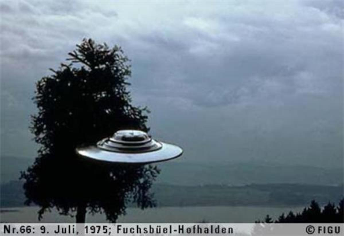 One of the Meier's Photographs of a Beamship floating/hovering beside a tree