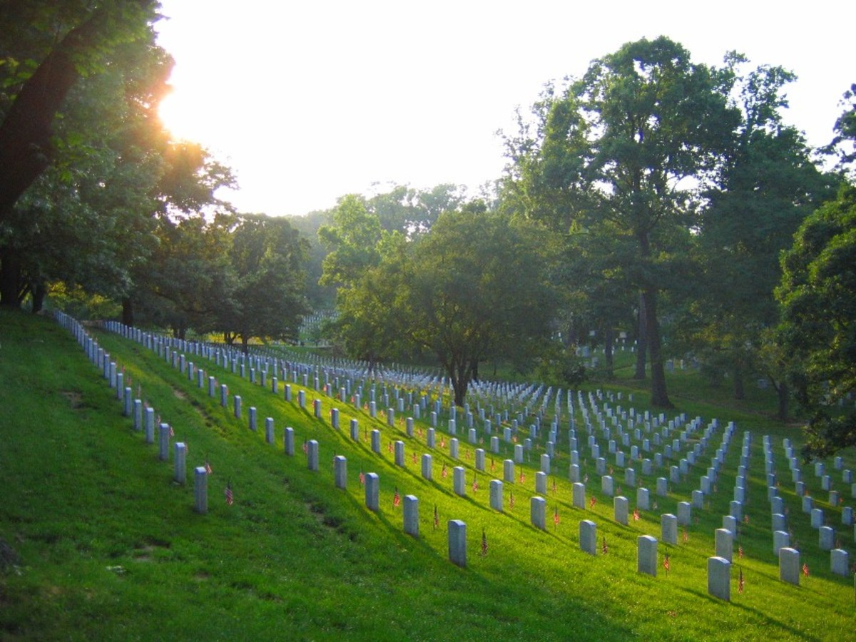 THOUSANDS OF CROSSES HERE AT ARLINGTON NATIONAL CEMETERY OFFEND AMERIKANS