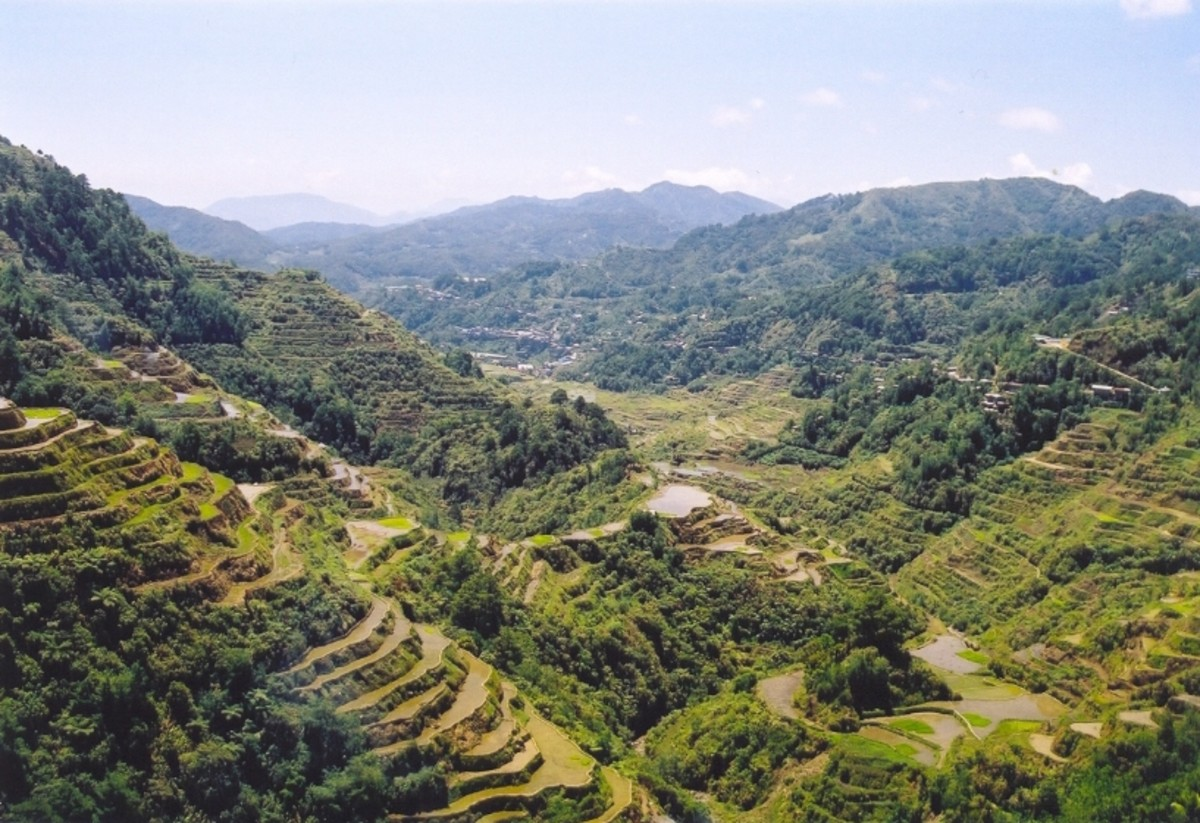 Courtesy of: http://upload.wikimedia.org/wikipedia/commons/1/17/Rice_Terraces_Banaue.jpg