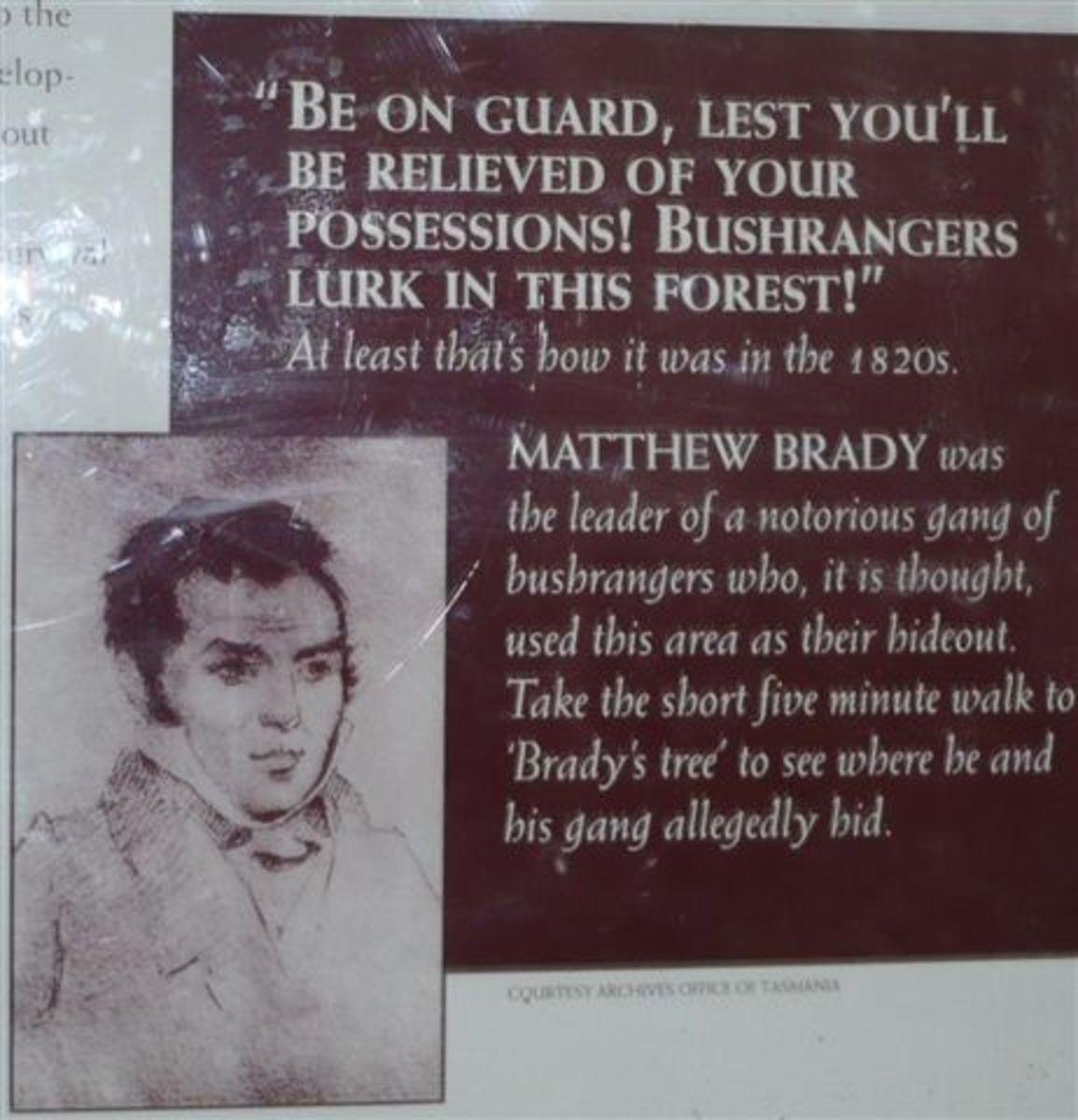 matthewbrady