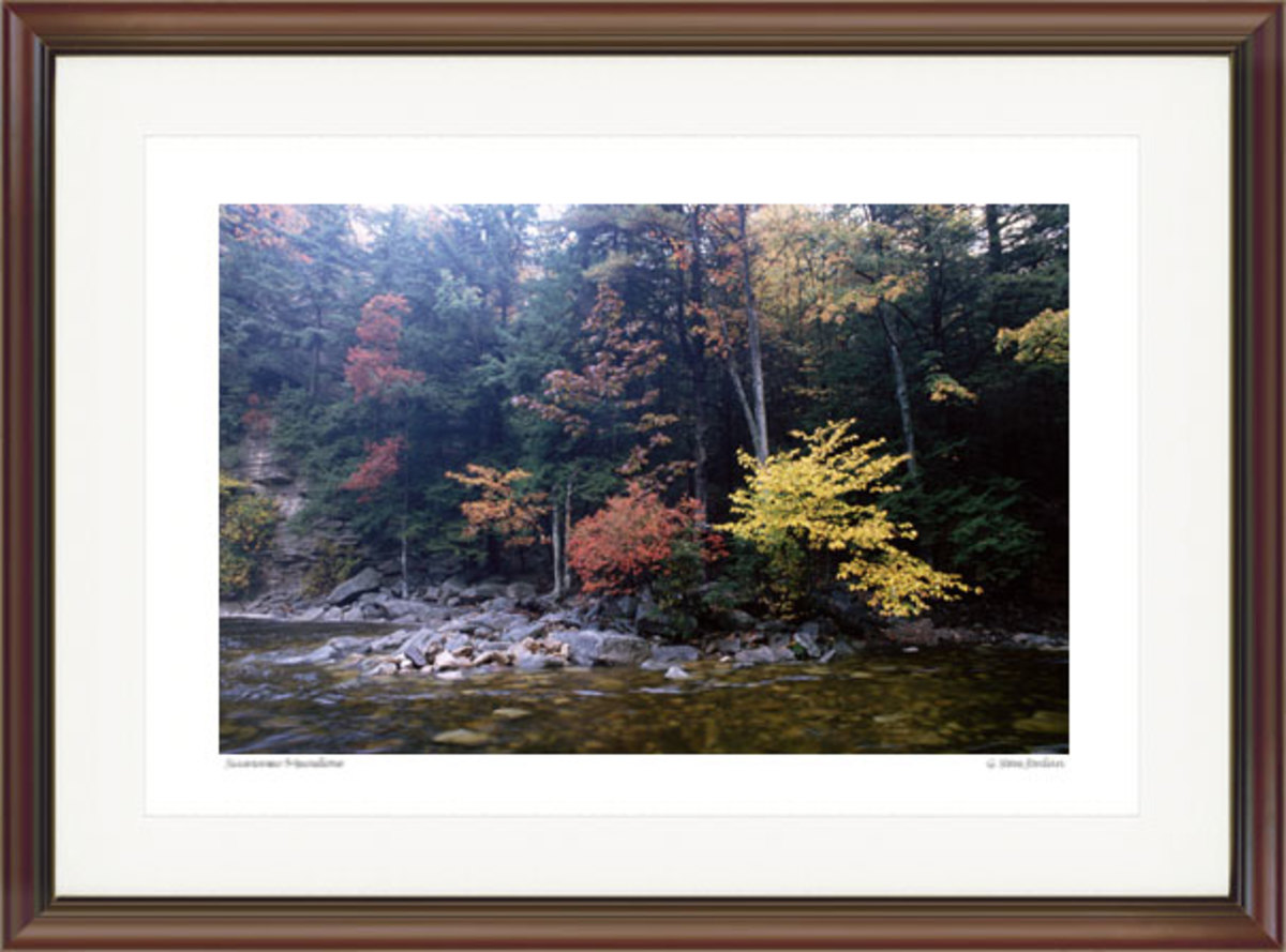 Autumn, Peterskill. Courtesy G. Steve Jordan. Gallery #41.