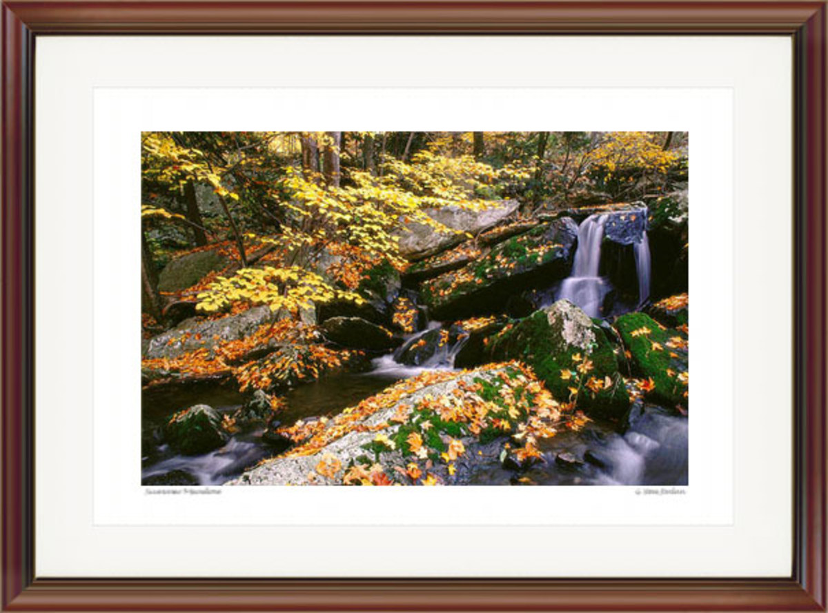 Mossy Brook Autumn. Courtesy G. Steve Jordan. Gallery #61.