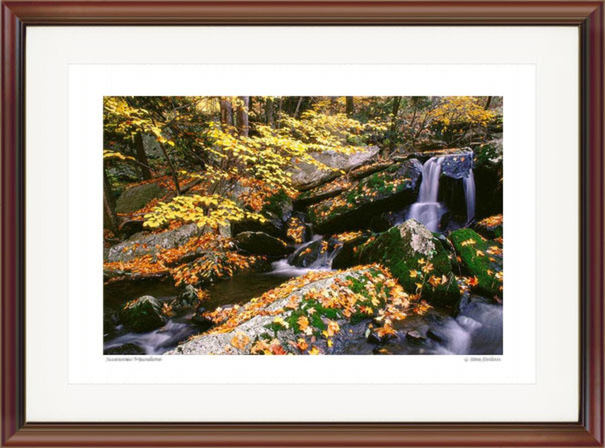 Mossy Brook Autumn. Courtesy G. Steve Jordan. Gallery #61.
