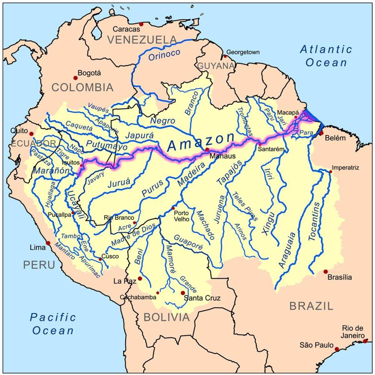 Amazon River - the worlds largest River (not longest) at a width of about 40 kilometres. Image Credit: Wikipedia