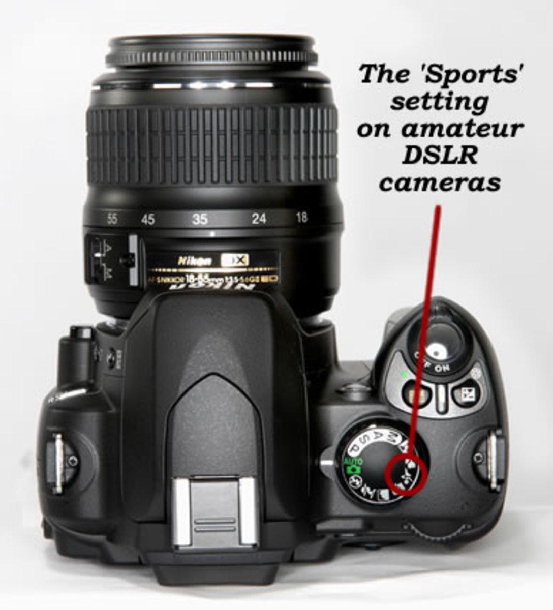 Amateur DSLR Camera