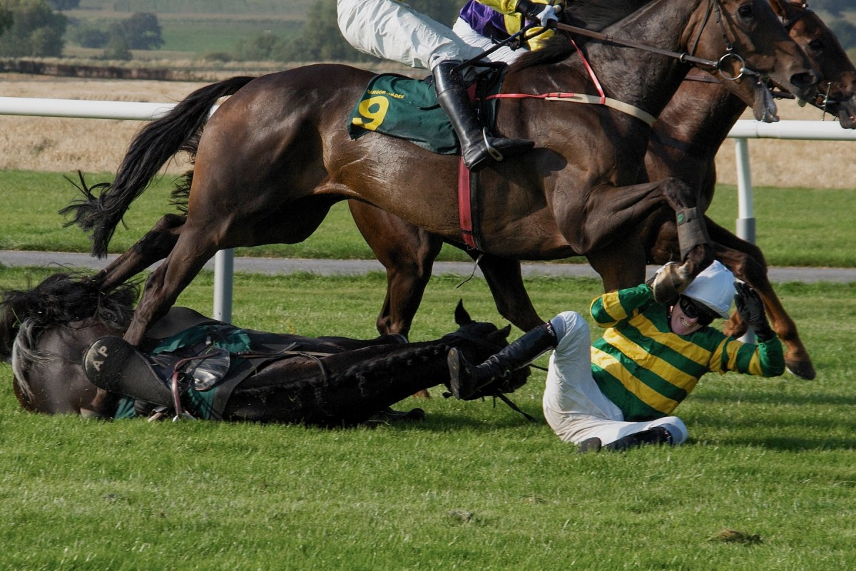 Jockey Falls During Race