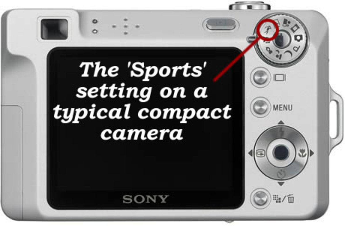 Find the 'Sports' setting on your camera