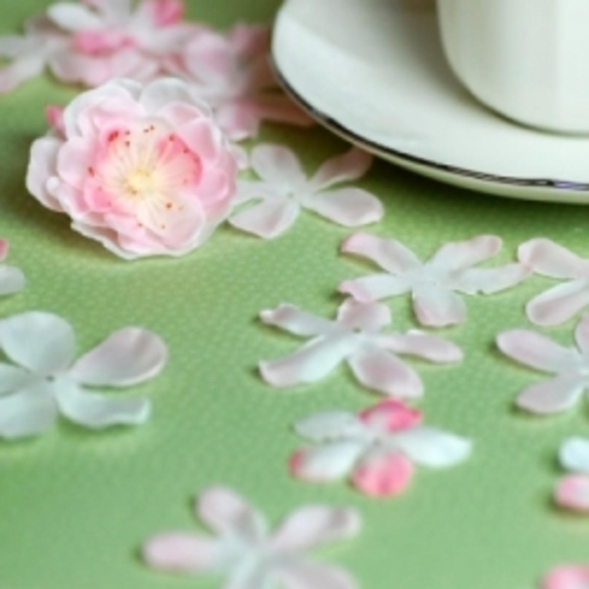 Cherry Blossoms & Tea