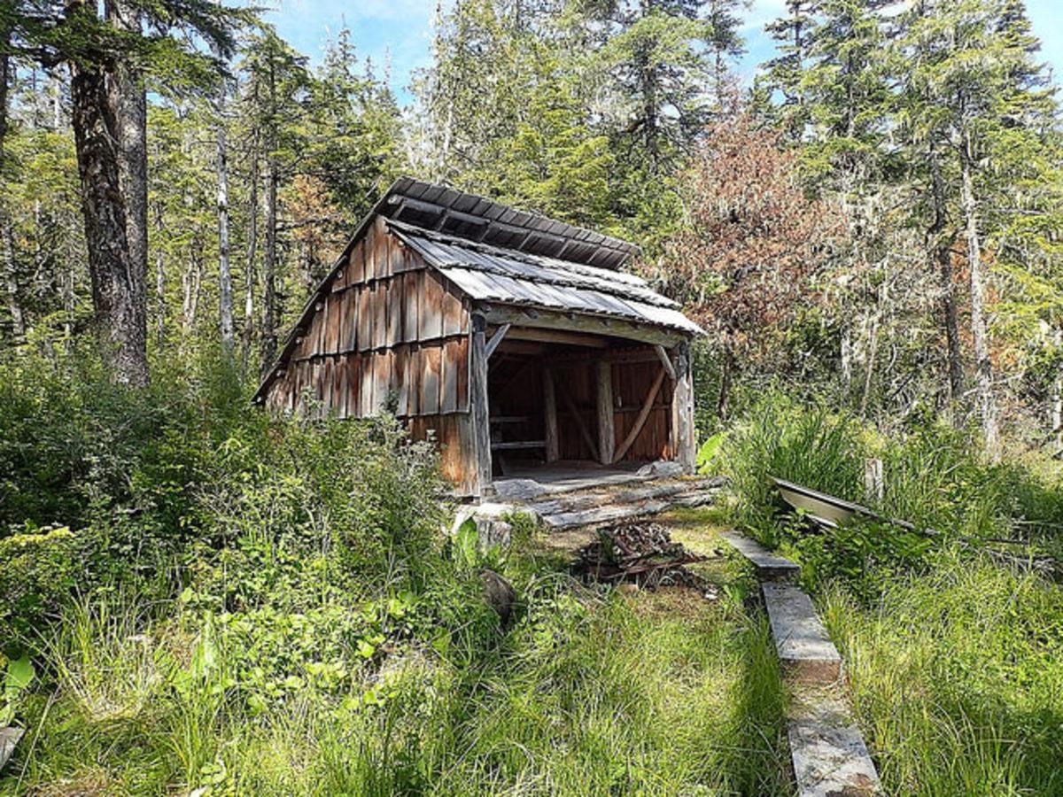 Adirondack-style shelter.