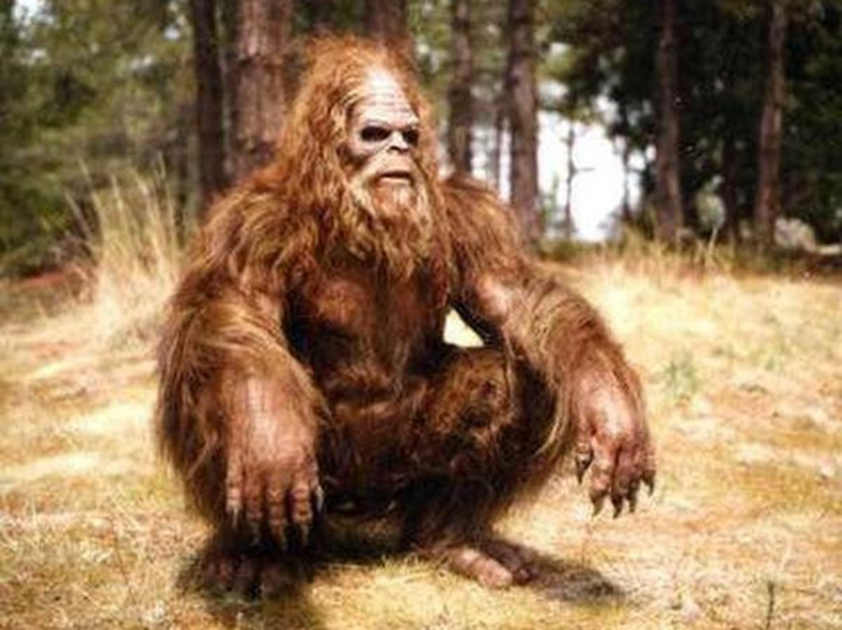 Bigfoot - All Time Hide and Seek Champion of the world