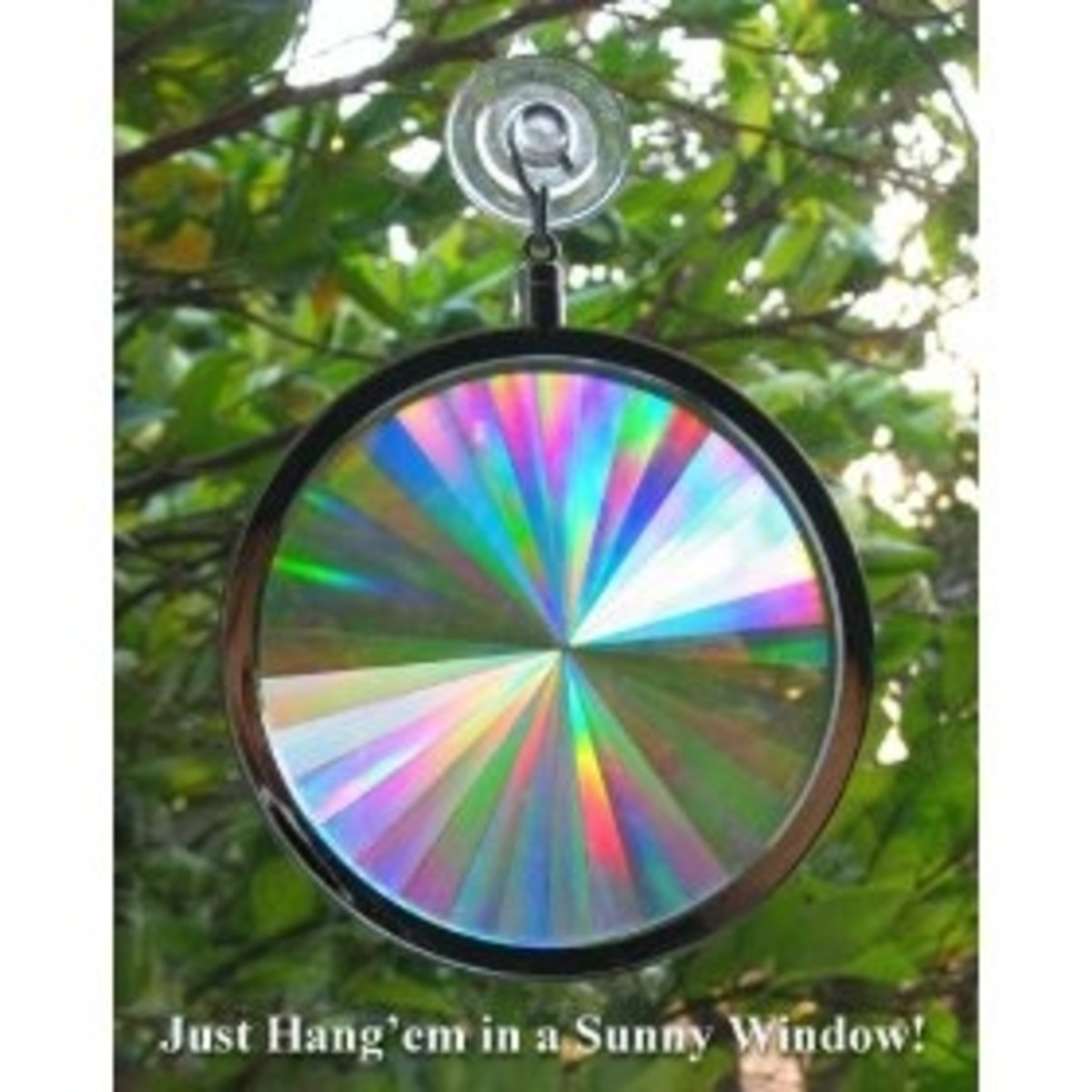 Suncatcher - Axicon Rainbow Window
