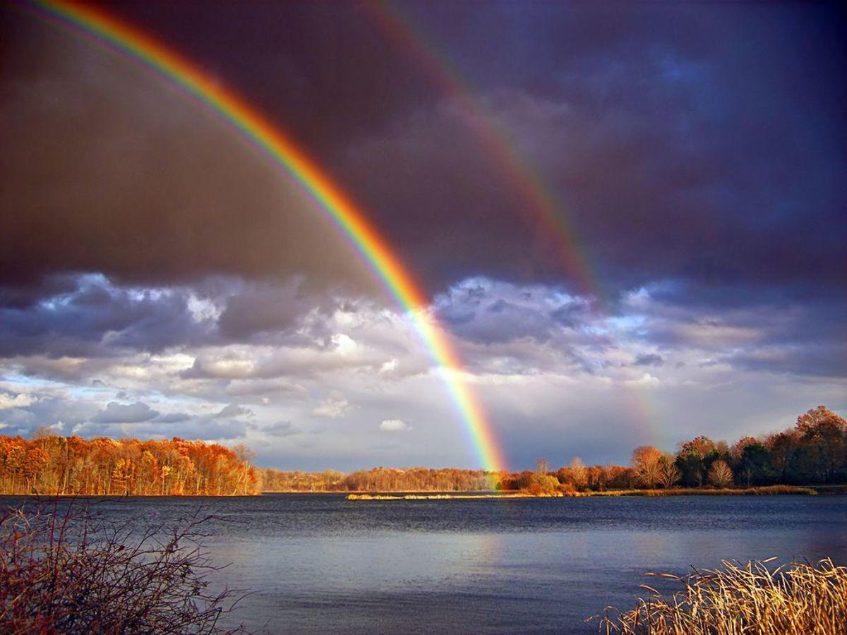 rainbow_makers