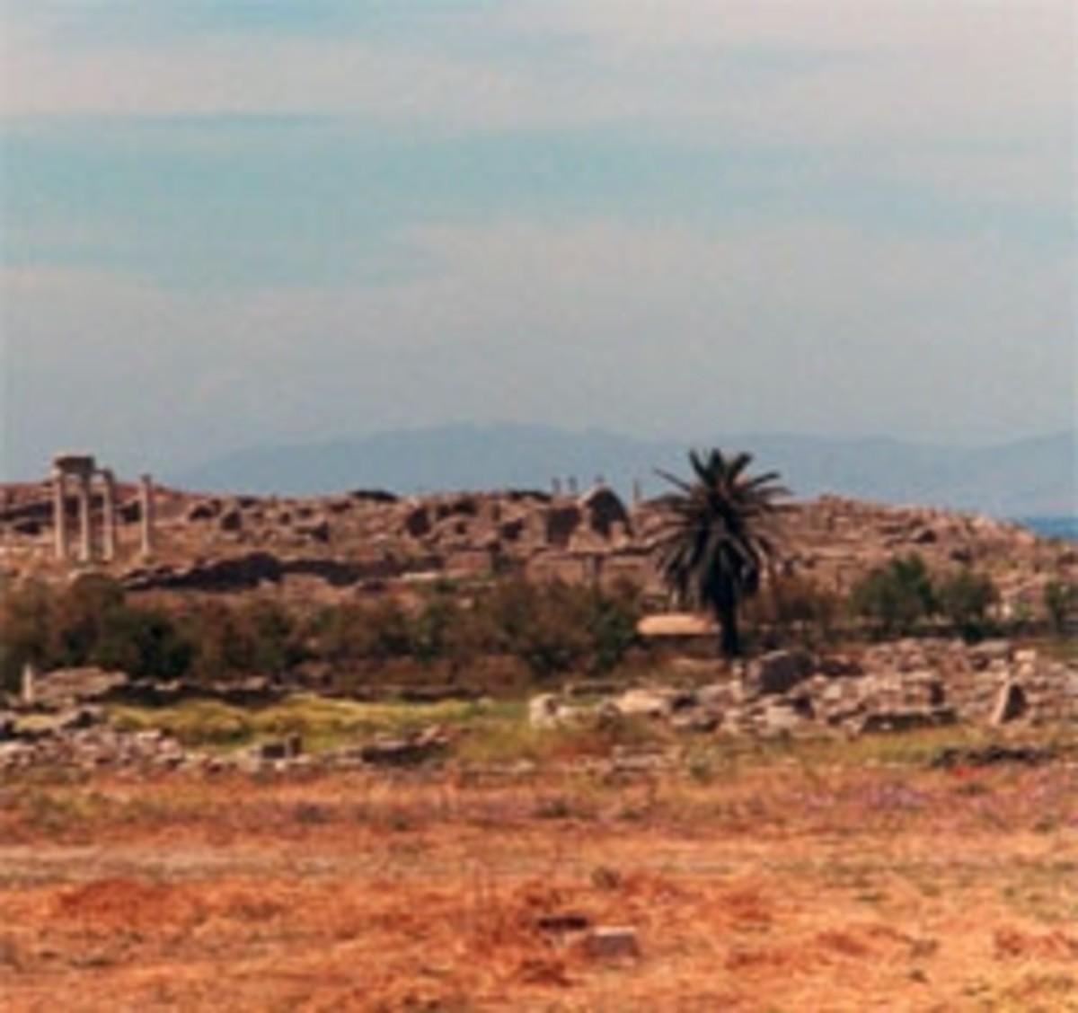 Sacred Lake and Palm Tree where Apollo Was Born (own photo)
