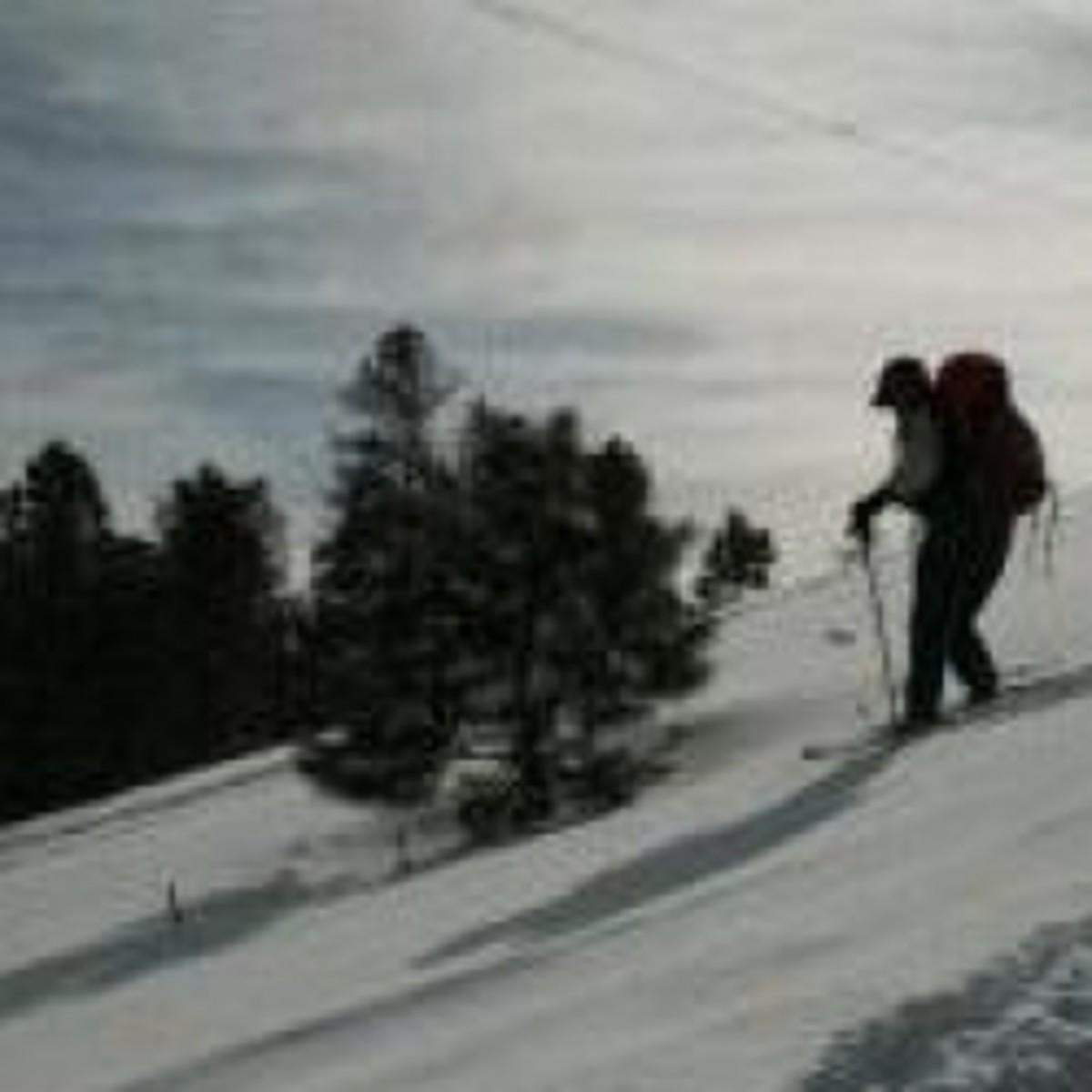 snowshoe-review-msr