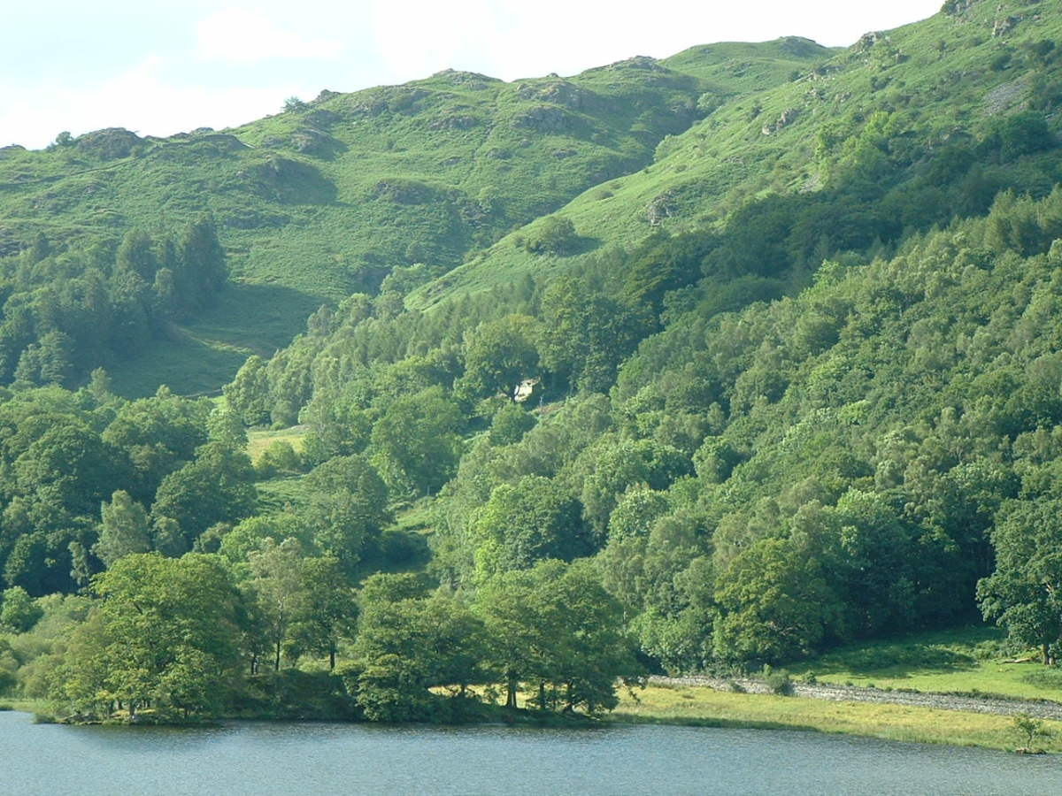 brockstone rydal white moss walk