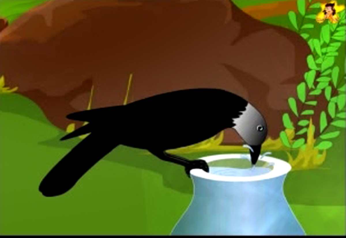 The thirsty crow drinks the water