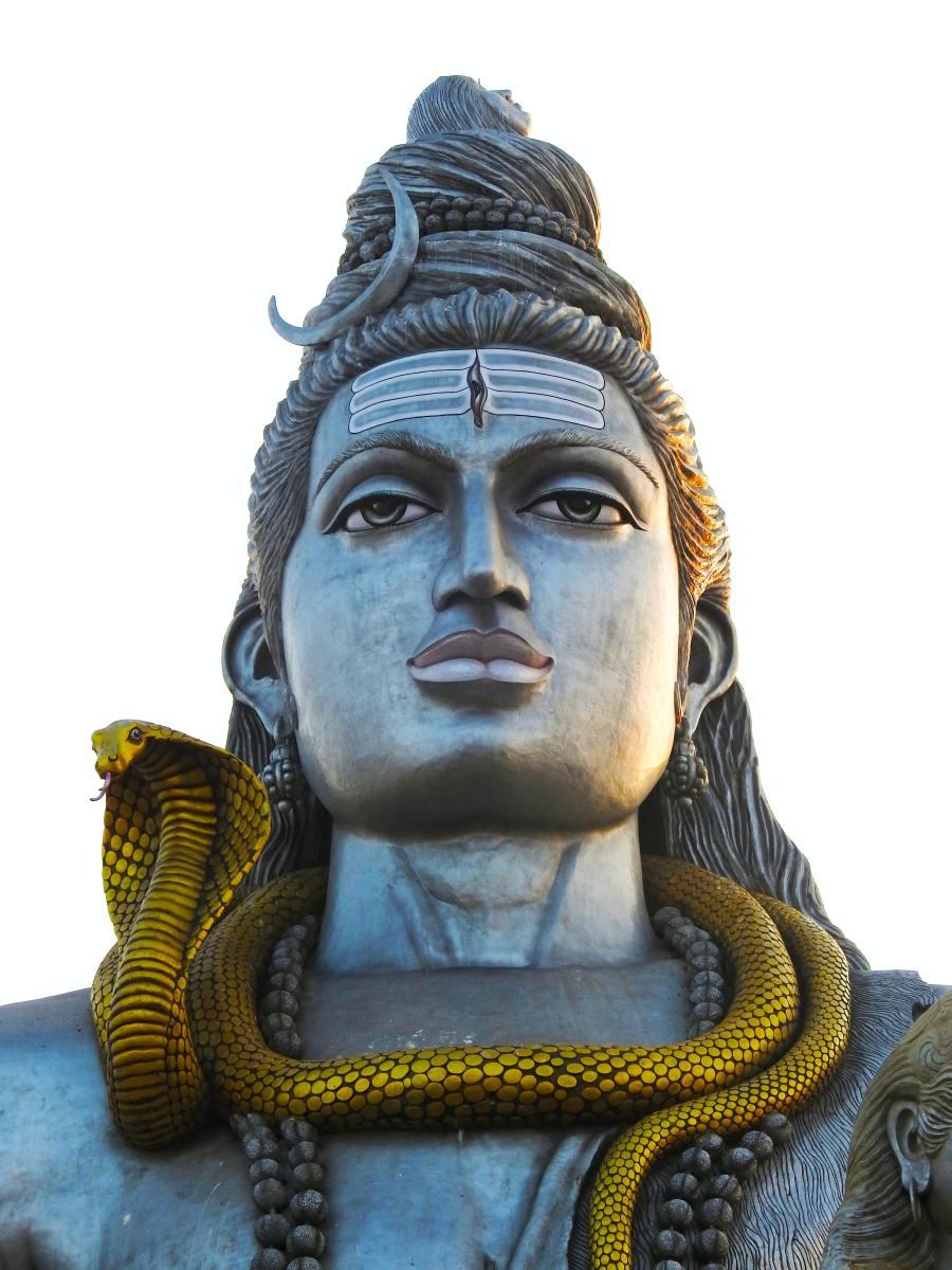Vasuki Naaga Wrapped Around Lord Shiva's Neck