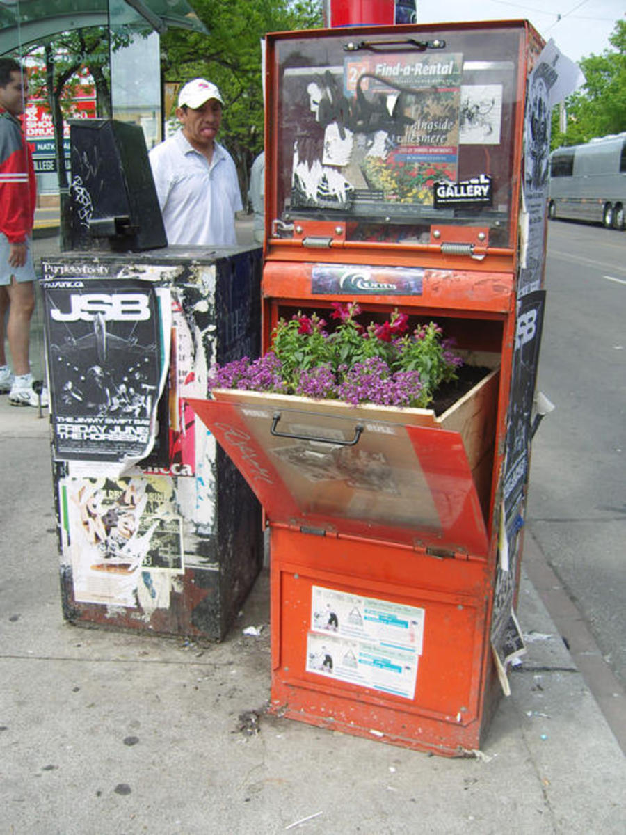 Who would ever have thought that that old rag box would turn into a planter for flowers of veggies?