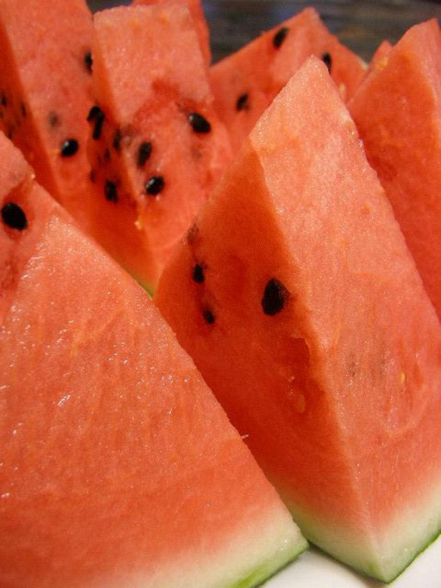 Why do watermelons crack, split and explode?